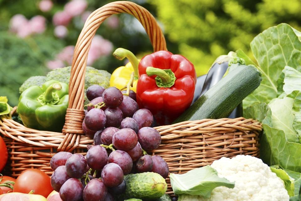 Diet & Health